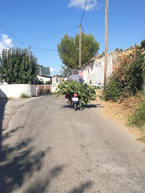 Creta 20